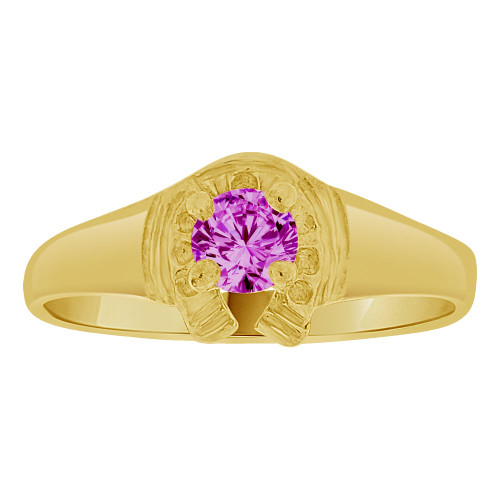 14k Yellow Gold, Lucky Horse Shoe Mini Size Child Ring Adult Pinky Ring Created CZ Crystal Purple (R263-302)