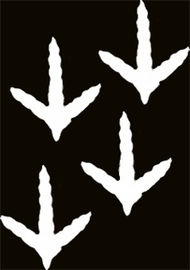 Mossy Oak White Vinyl Decal Turkey Tracks
