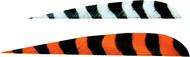 "Trueflight 5"" RW Barred Feathers 6-Gray 12-Orange - 18 Pieces Feathers"