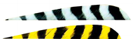 """Trueflight 5"""" RW Barred Feathers 6-Gray 12-Yellow - 18 Pieces Feathers"""