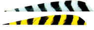 """Trueflight 4"""" RW Barred Feathers 6-Gray 12 Yellow - 18 Pieces Feathers"""