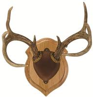 Walnut Hollow Deluxe Antler Display Kit Walnut Mounting Kit