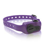 Dogtra iQ Pet No Bark Collar Purple