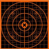 "Big Burst 12"" Target"