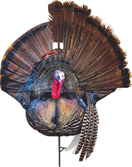 Montana Wiley Tom Decoy Turkey Decoy