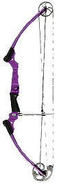 2015 Genesis Bow Wild Berry Right Hand Youth Bow
