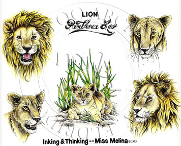 Lion designs by this Indiana tattooist. Color  (includes line drawings) 11 x 15