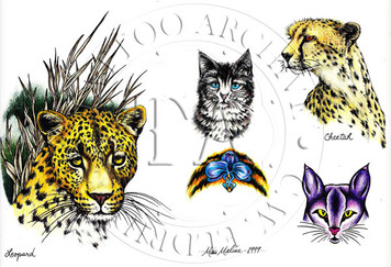 Leopard & Cheetah designs by this Indiana tattooist.  Color (includes line drawings) 11 x 17