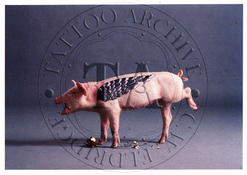 Artemis, The Tattooed Pig Postcard