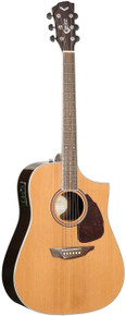 Samick Acoustic Guitar Dreadnought S650D