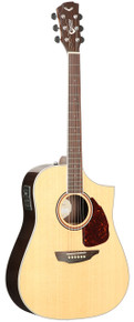 Samick SGW Acoustic Guitar Dreadnought S550D