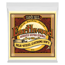 Ernie Ball Earthwood Silk and Steel Soft 12-String 80/20 Bronze Acoustic Guitar String, 9-46 Gauge