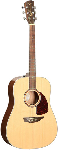 SGW SAmick Guitar Works Acoustic Guitar S300D