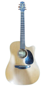 Takamine TEAN10C Japanese Made Semi Acoustic
