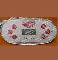 X310135 Master Spas VL600S Panel For Legacy Spas '07