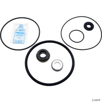 Spa Pump Go-Kit 43, AP Maxim/Americana II/Power Glas Pumps