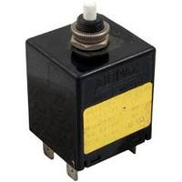 Spa Circuit Breaker 5A, 125/250V