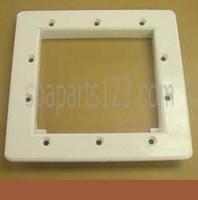 PDC Spas Filter Skimmer Gasket Plate W/Gasket