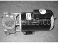 Dynasty Spas Pump, 5.0 HP, 220v, 60HZ, 2 Speed, Blue Wet, 11304, 07827331-2370