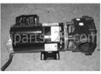 Dynasty Spas Pump, 4.8 HP, 220v, 2 Speed, 60HZ, 4ft Cord w/Tan mini JJ cord, 11305, 06626334-2371