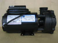 Catalina Spas 1 1/2 HP Pump 1 or 2 Speed