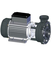 21-0045-81, Artesian Spa Pump, 3.0 Hp 1 Spd. 50Hz (European)