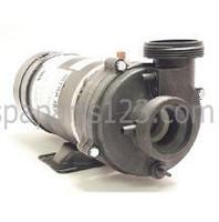 6500-217 Sundance® Spas Vico Pump 2 Hp, 2 Speed Pump, 240 Volt 1994-1996