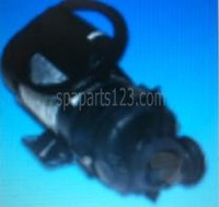 01562-39C Dimension One Spas Pump, 3.6HP, Two Speed, Sta-Rite DJAYGB-9173D