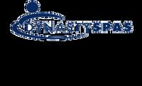 12291 Dynasty Spas Topside Overlay, E5-2, SV501, Carddine Logo