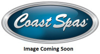 "3-3/8"" Coast Spas Jet, Poly Storm, Rifled, Stainless W/ Dk Gray, CC2121939-GMBS-X"