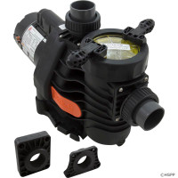 "Pump, Spck EsyFit,Whspr/Intflo,1.5hp,230v,2-Spd,1.5"",Kit (1)"