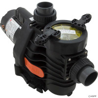 Pump, Speck EasyFit, 2.5 Horsepower, 2 Speed, OEM (1)