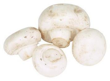Mushroom White Bulk 1lb