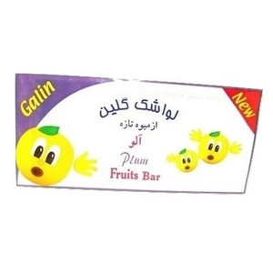 Plum Fruit Bar (30g) - Galin