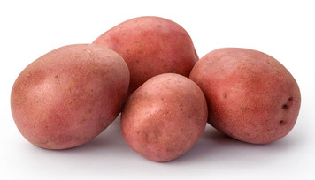 Red Potato  10 lbs