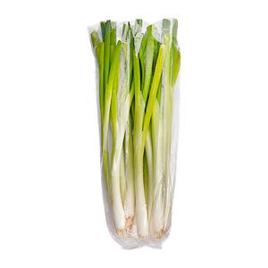 Organic Green Onions (1 bunch)