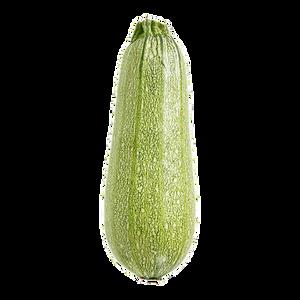 Grey Zucchini 1ea