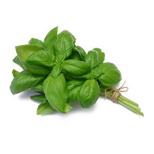 Fresh Basil (1 bunch)
