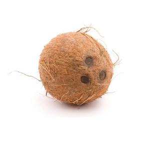 Coconut (1 ea)