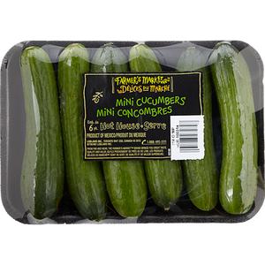 Mini Cucumbers (6 pack)