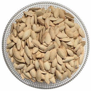 Roasted Salted Mashhadi Melon Seeds (1/2 lb)