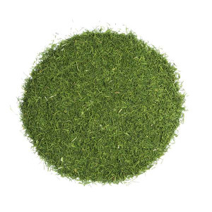 Dill Weed (100 gr)