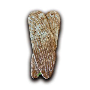 Long Whole Wheat Barbari 2Pcs - Shaheen