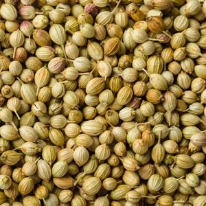 Coriander Seed  (100gr)
