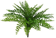 "15""L BOSTON FERN BUSH - TT GREEN"