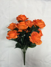 Color Fast Lillian Open Rose Bush-Orange