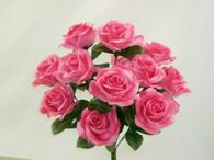 Color Fast Lillian Open Rose Bush-Pink