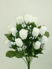 Color Fast Lillian Rose Bush - White