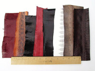 SNAKE SKIN SNAKESKIN PIECES GRAB BAG! ASSORTED 72 inches, 6 feet