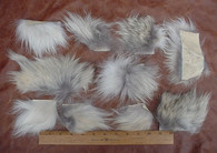 COYOTE SKIN FUR PELT HIDE 10 SMALL SCRAP PIECES 1 Square Foot